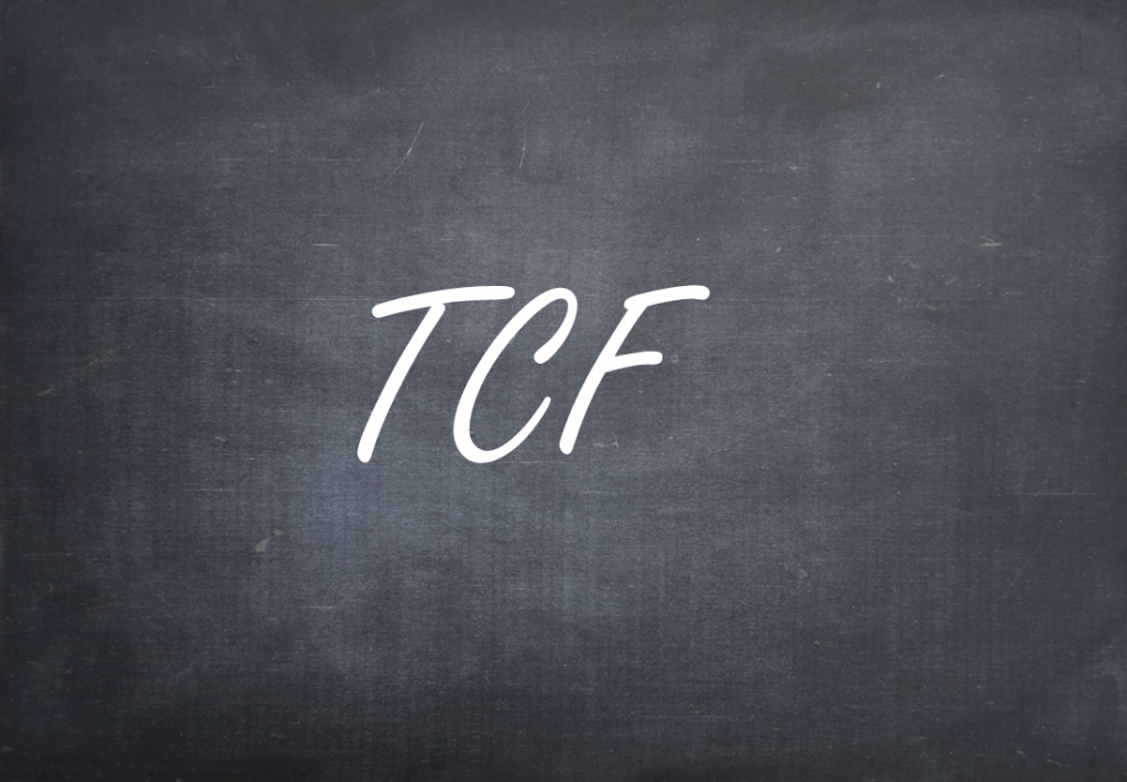 Definition von Transparency and Consent Framework (TCF)